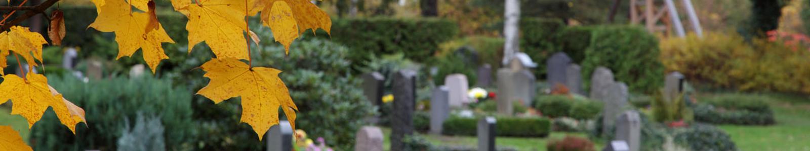 Friedhofsverwaltung Kleinolbersgrün